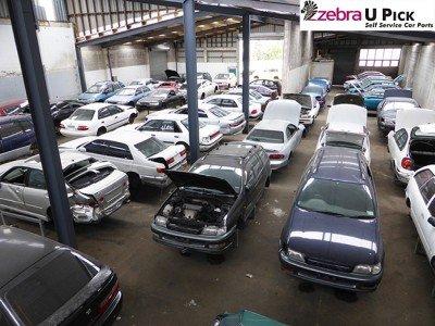 Cars indoors at U-Pick Onehunga