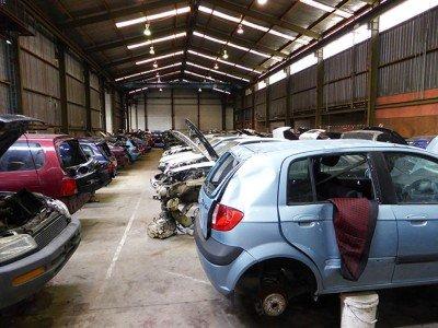 Loads of Cars inside at U-Pick Manukau